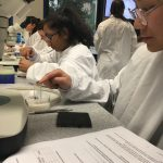 Genetics workshop experiment