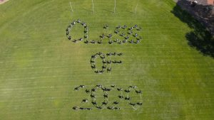 class of 2020 overhead picture